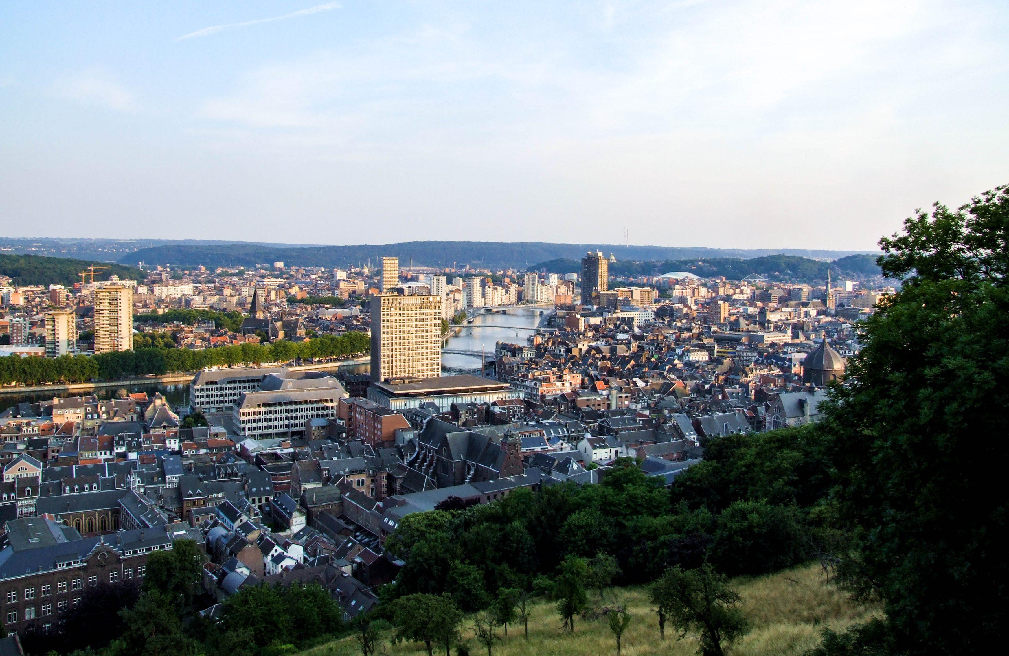 Liège vu de la citadelle